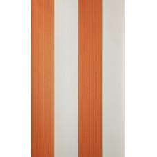 Broad Stripe ST 13102