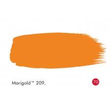 MARIGOLD 209