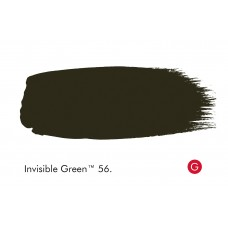 INVISIBLE GREEN 56