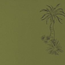 Lighthouse Palm - Chelsea Green